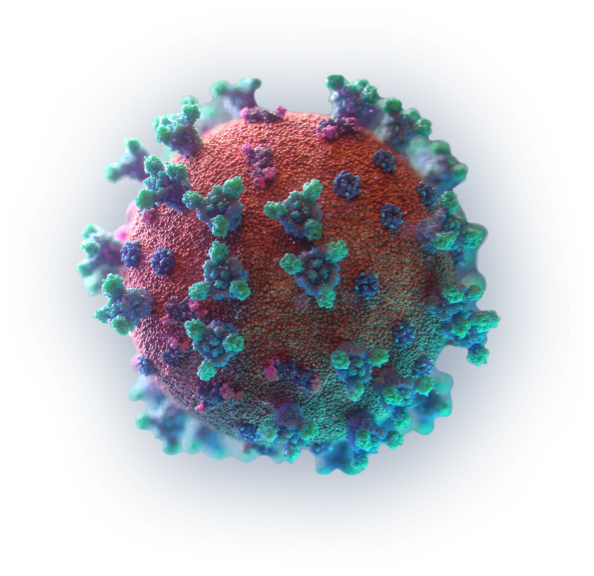 Novel Activating Antibodies for Viral Treatment