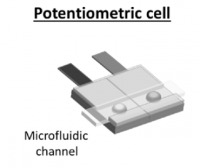 Potentiometric sensors for the selective and direct detection of hydrogen peroxide